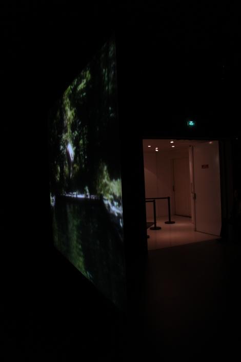BIll Viola Exhibition