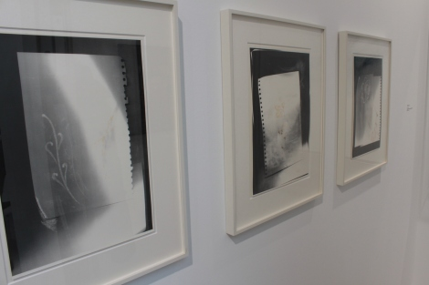 Thomas Helbig, Blüten, 2014, Gallery : Guido W. Baudach