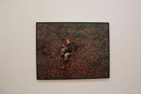 Taryn Simon, The innocents, 2002